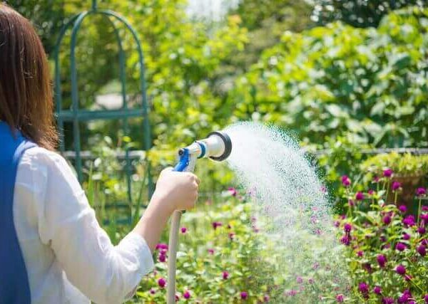 ガーデニング・家庭菜園では必須であるジョウロの選び方