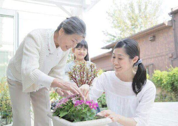 春のガーデニングにおすすめの育てやすい花5選
