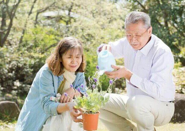 園芸の基本を知れる、ガーデニング関係の資格について