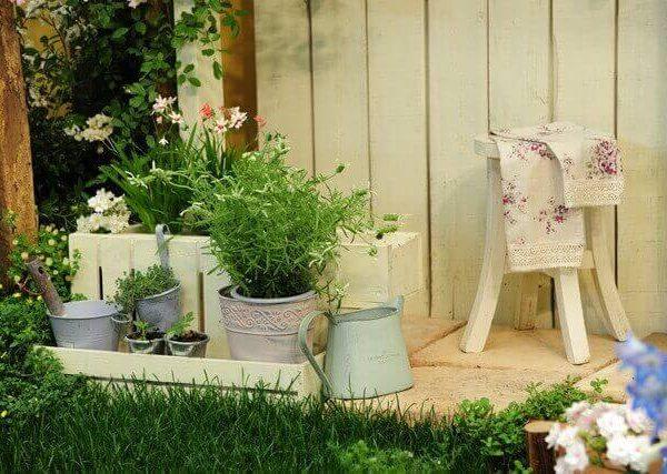 テーブルビートの育て方【室内やベランダで簡単栽培】