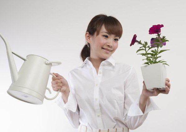プレゼントに選びたい、贈り物に適した園芸用品