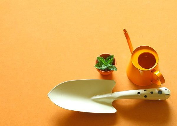 ベランダ菜園の最初の野菜づくりに必要なおすすめのグッズ2選