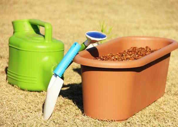 野菜作りの素朴な疑問 培養土と堆肥