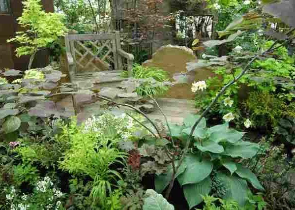 プランターでできる人気の観葉植物の育て方