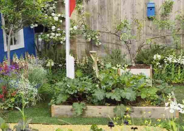ベランダ菜園で時差収穫が可能なおすすめの野菜2選
